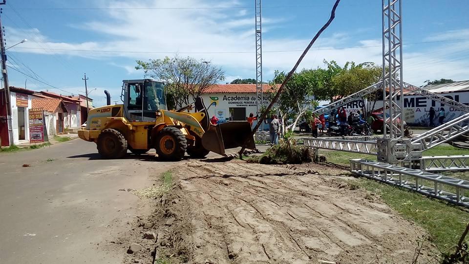 Prefeitura corta várias árvores de praça e revolta moradores em Esperantina
