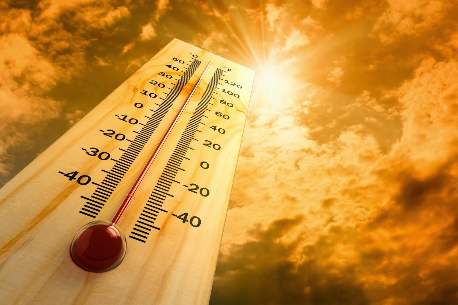 Novembro de 2020 foi o mais quente da história, diz estudo